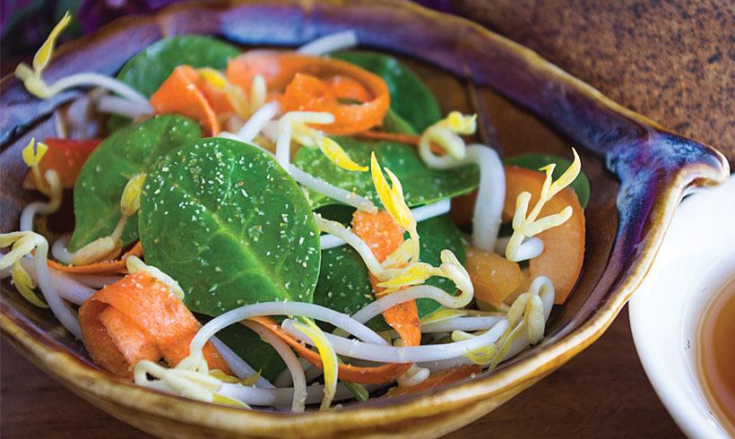 salata-od-spanaca