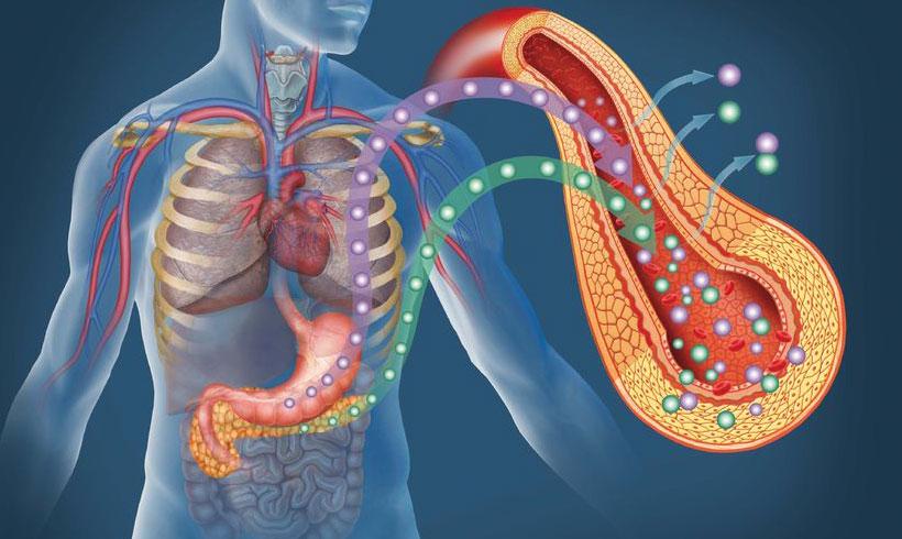 Bolest današnjice - Insulinska rezistencija